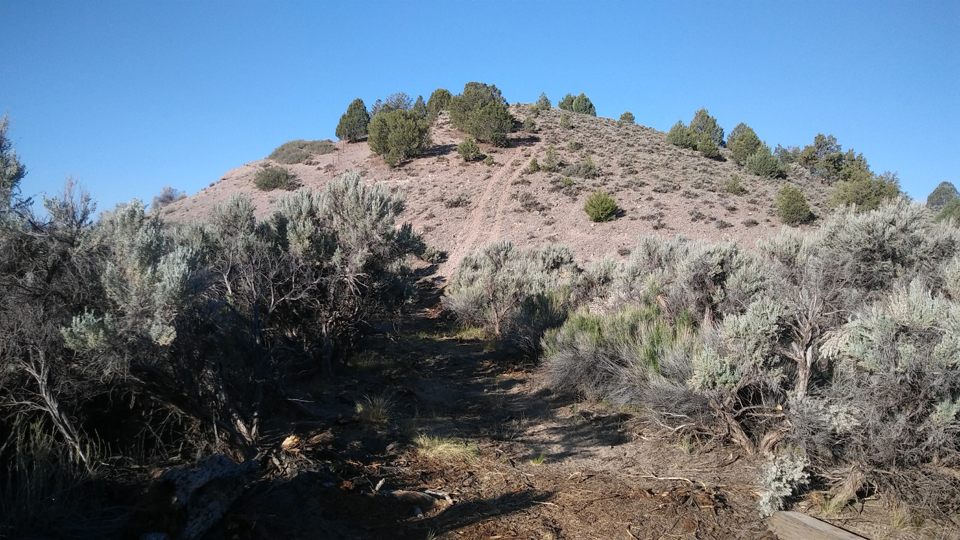 Ridgeline Loop Trail