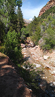 Kolob Canyons - Taylor Creek Trail Photo