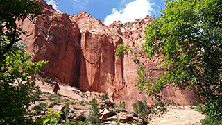Kolob Canyons - Taylor Creek Trail